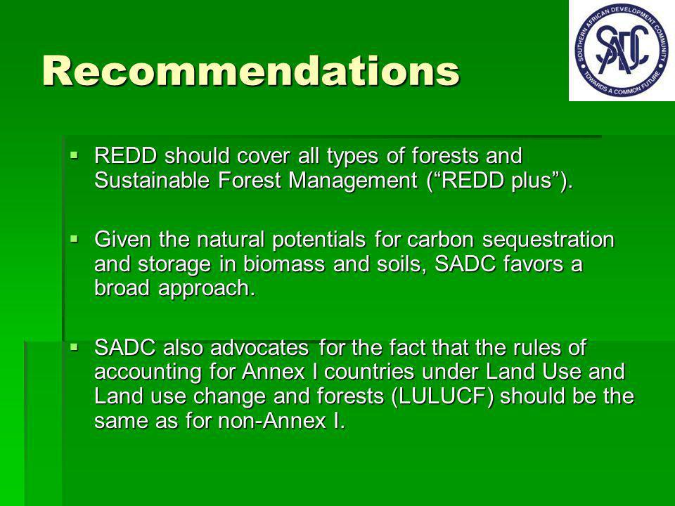 Recommendations REDD should cover all types of forests and Sustainable Forest Management (REDD plus).