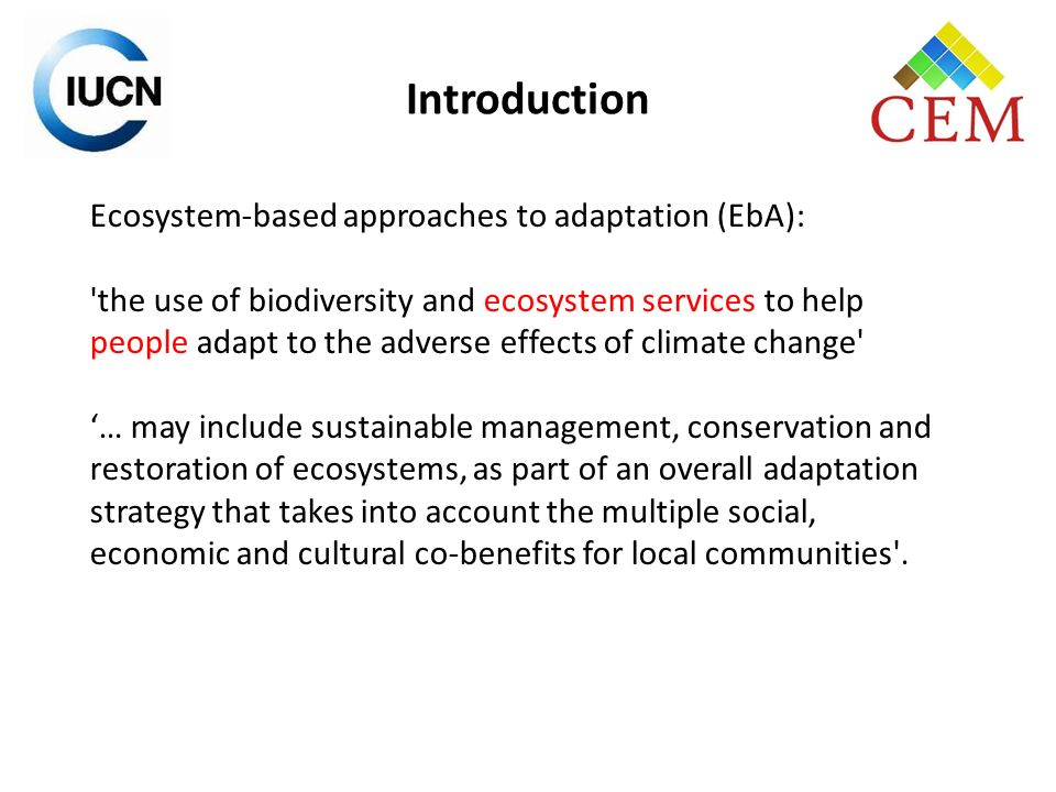 1.Promotes the resilience of societies and ecosystems: Understands what makes resilient ecosystems and the services they supply.