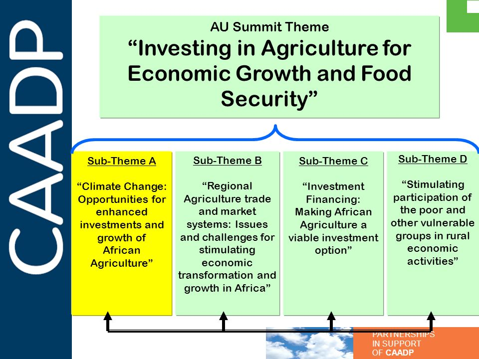 PARTNERSHIPS IN SUPPORT OF CAADP AU Summit Theme Investing in Agriculture for Economic Growth and Food Security Sub-Theme A Climate Change: Opportunit