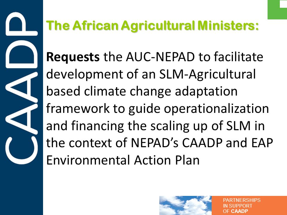 PARTNERSHIPS IN SUPPORT OF CAADP The African Agricultural Ministers: Requests the AUC-NEPAD to facilitate development of an SLM-Agricultural based cli