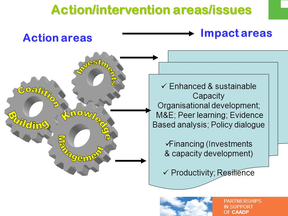 PARTNERSHIPS IN SUPPORT OF CAADP Impact areas Enhanced & sustainable Capacity Organisational development; M&E; Peer learning; Evidence Based analysis;