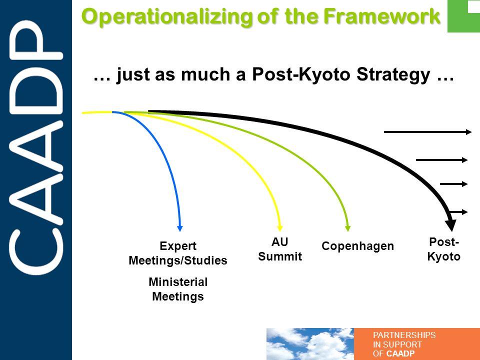 PARTNERSHIPS IN SUPPORT OF CAADP Operationalizing of the Framework Expert Meetings/Studies Ministerial Meetings AU Summit Post- Kyoto Copenhagen … jus