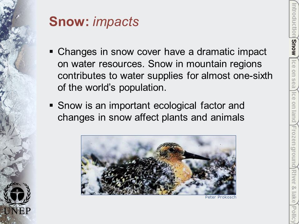 Policy River & lake Frozen ground Ice on land Ice on sea Snow Introduction Snow Snow: impacts Changes in snow cover have a dramatic impact on water resources.