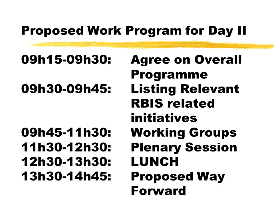 Proposed Work Program for Day II 09h15-09h30:Agree on Overall Programme 09h30-09h45:Listing Relevant RBIS related initiatives 09h45-11h30:Working Groups 11h30-12h30:Plenary Session 12h30-13h30:LUNCH 13h30-14h45:Proposed Way Forward