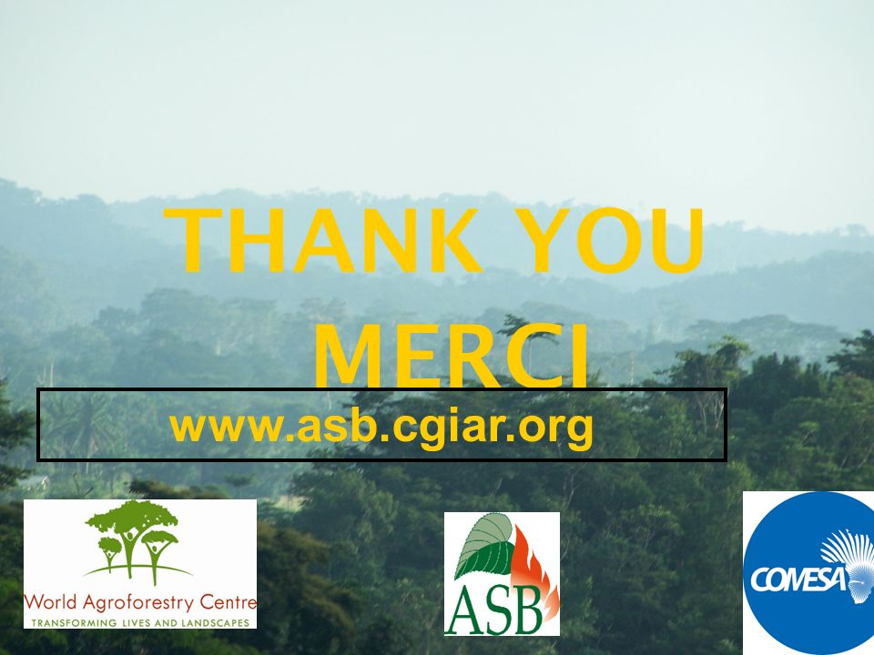 THANK YOU MERCI www.asb.cgiar.org
