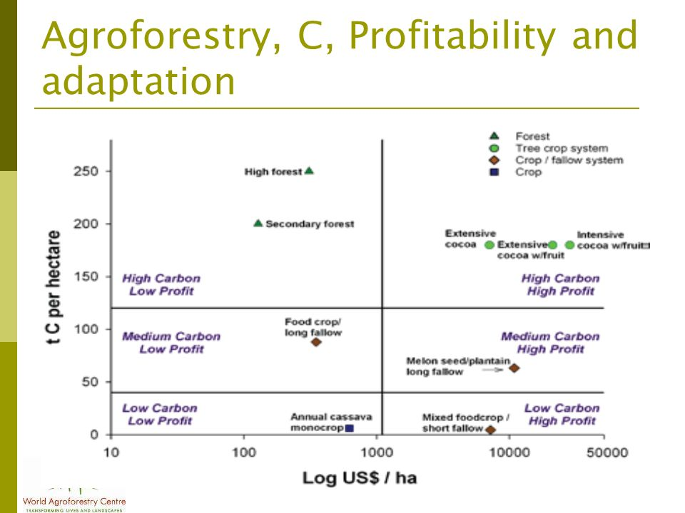 Agroforestry, C, Profitability and adaptation