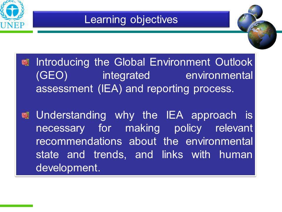 What is Integrated Environmental Assessment (IEA).