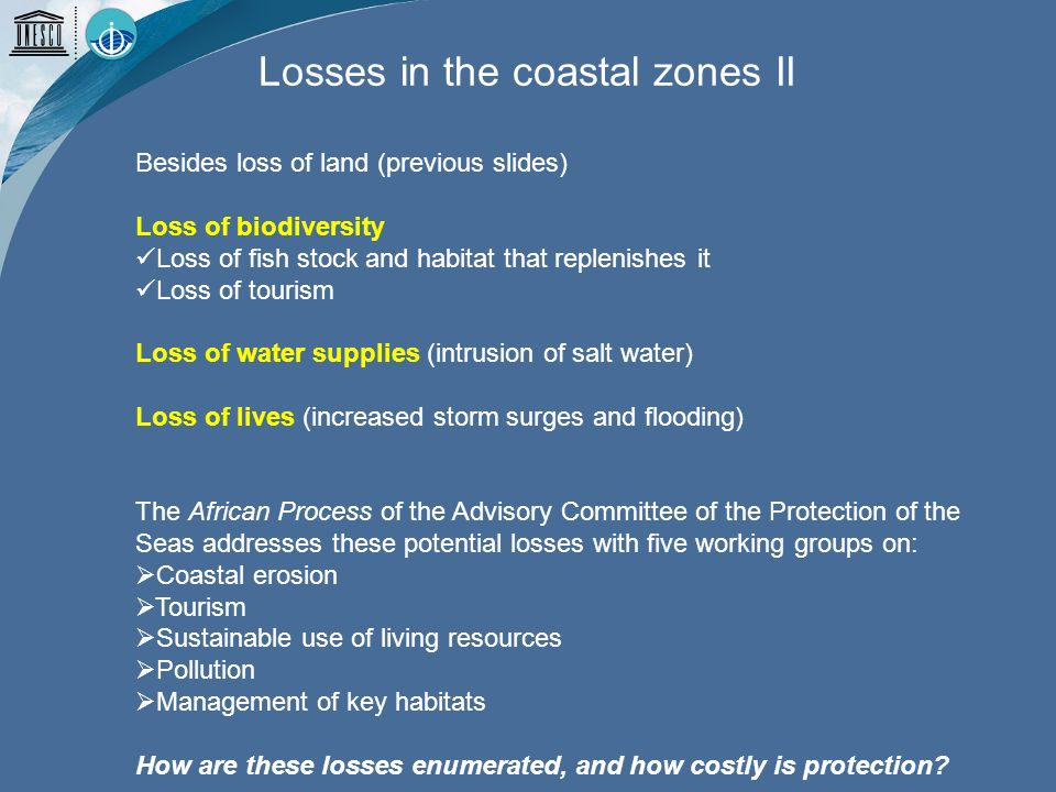 Besides loss of land (previous slides) Loss of biodiversity Loss of fish stock and habitat that replenishes it Loss of tourism Loss of water supplies (intrusion of salt water) Loss of lives (increased storm surges and flooding) The African Process of the Advisory Committee of the Protection of the Seas addresses these potential losses with five working groups on: Coastal erosion Tourism Sustainable use of living resources Pollution Management of key habitats How are these losses enumerated, and how costly is protection.