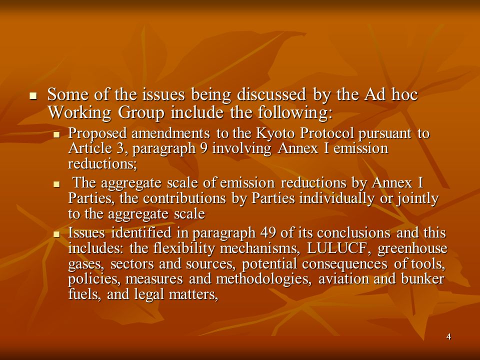 4 Some of the issues being discussed by the Ad hoc Working Group include the following: Some of the issues being discussed by the Ad hoc Working Group