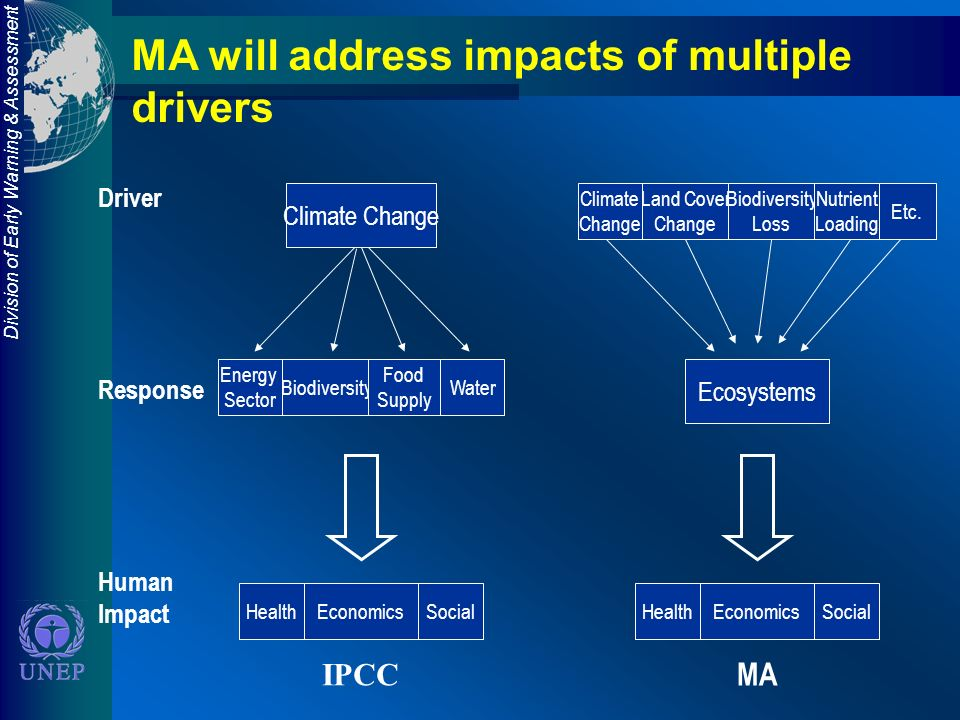 Division of Early Warning & Assessment Driver Response Human Impact MA will address impacts of multiple drivers IPCC Climate Change Energy Sector Biodiversity Food Supply Water HealthEconomicsSocial Ecosystems HealthEconomicsSocial Climate Change Land Cover Change Biodiversity Loss Nutrient Loading Etc.