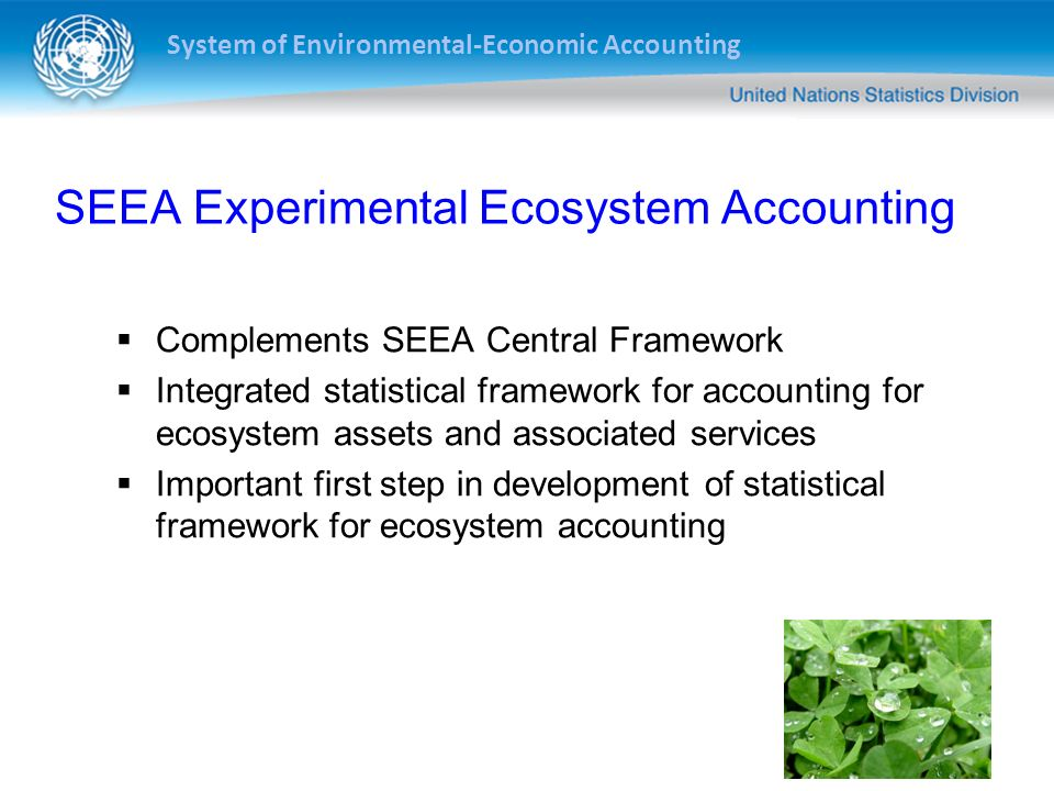 System of Environmental-Economic Accounting Ecosystem asset (spatial area) Ecosystem processes Economic & other human activity Exchanges & social interactions Ecosystem services Inter-ecosystem flows Ecosystem characteristics Intra-ecosystem flows Human impacts Basic accounting model