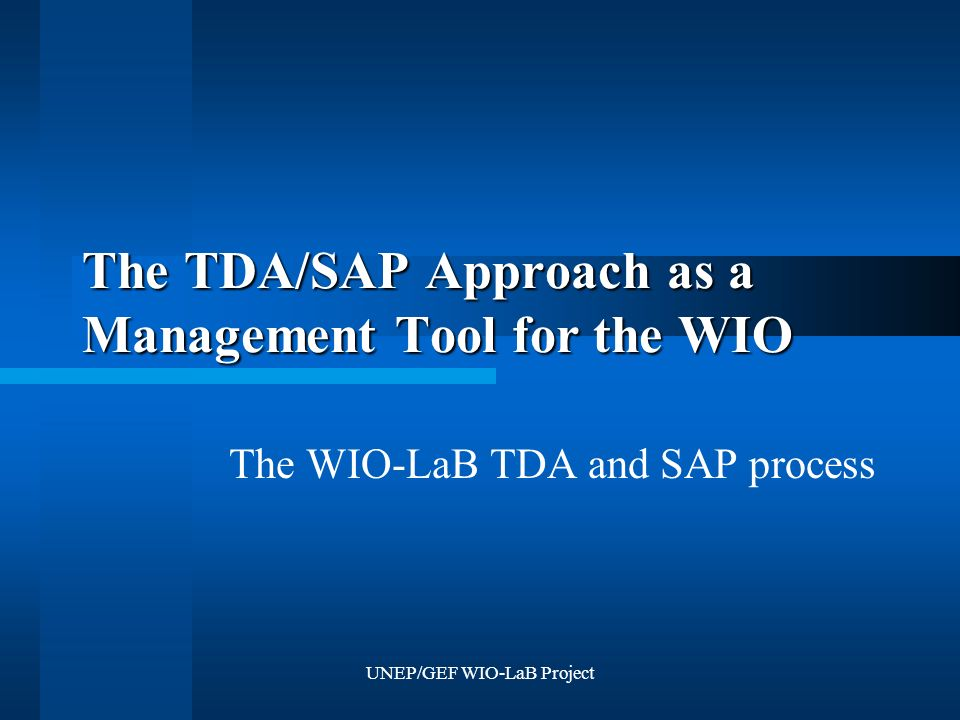 UNEP/GEF WIO-LaB Project The TDA/SAP Approach as a Management Tool for the WIO The WIO-LaB TDA and SAP process