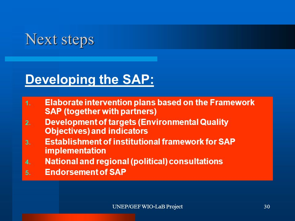 UNEP/GEF WIO-LaB Project30 Next steps 1. Elaborate intervention plans based on the Framework SAP (together with partners) 2. Development of targets (E