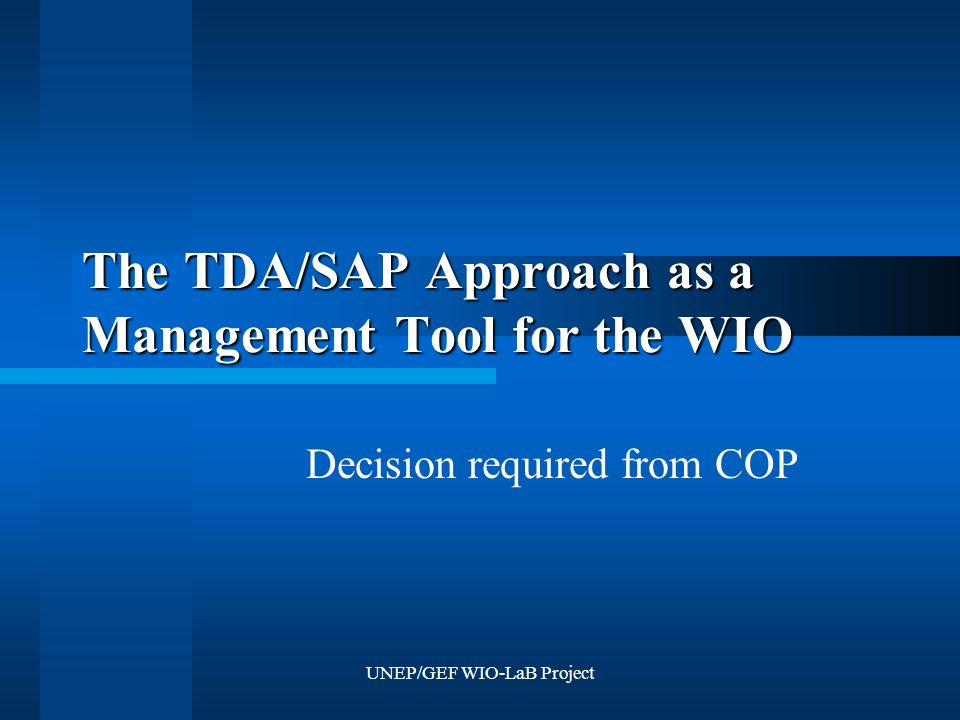 UNEP/GEF WIO-LaB Project The TDA/SAP Approach as a Management Tool for the WIO Decision required from COP