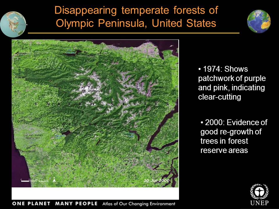 Different land use practices visible across country border, Mexico/Guatemala : Conversion of forest to agriculture Now country border can be seen even from space
