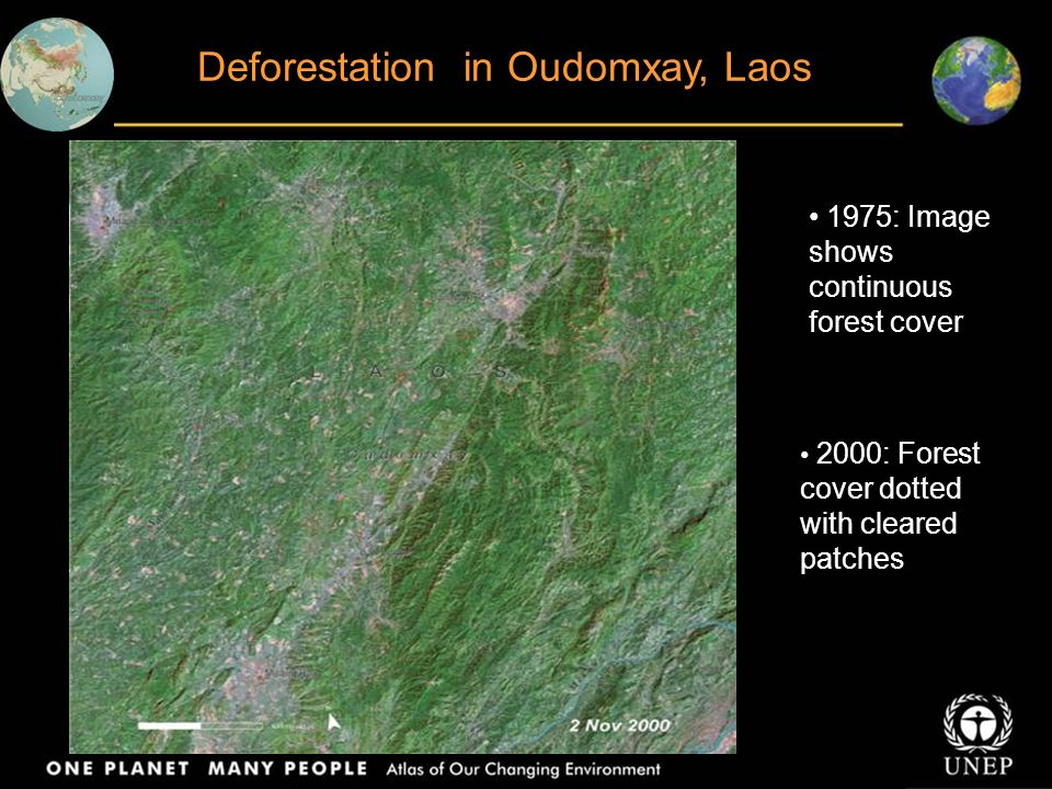 Forest in the Demilitarized Zone (DMZ) Korea Images reveal significant burn scars in the DMZ
