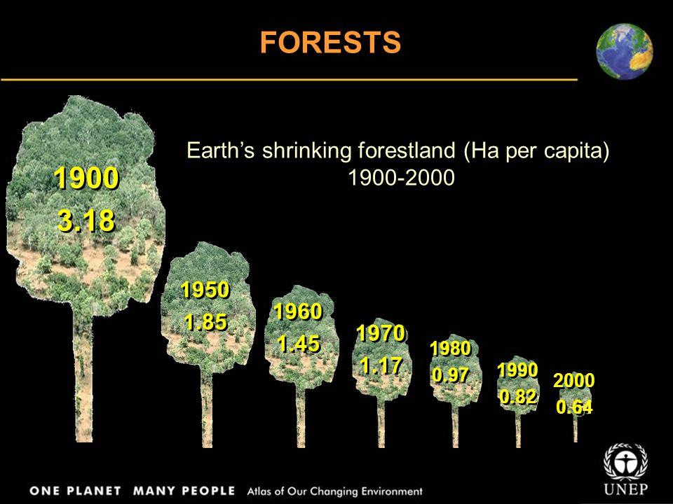 FORESTS Papua, Indonesia Demilitarized Zone, Korea Oudomxay, Laos Arkhangelsk, Russia Sakhalin, Russia Lappi, Finland Iguazú, South America Rondônia, Brazil Valdivian, Chile