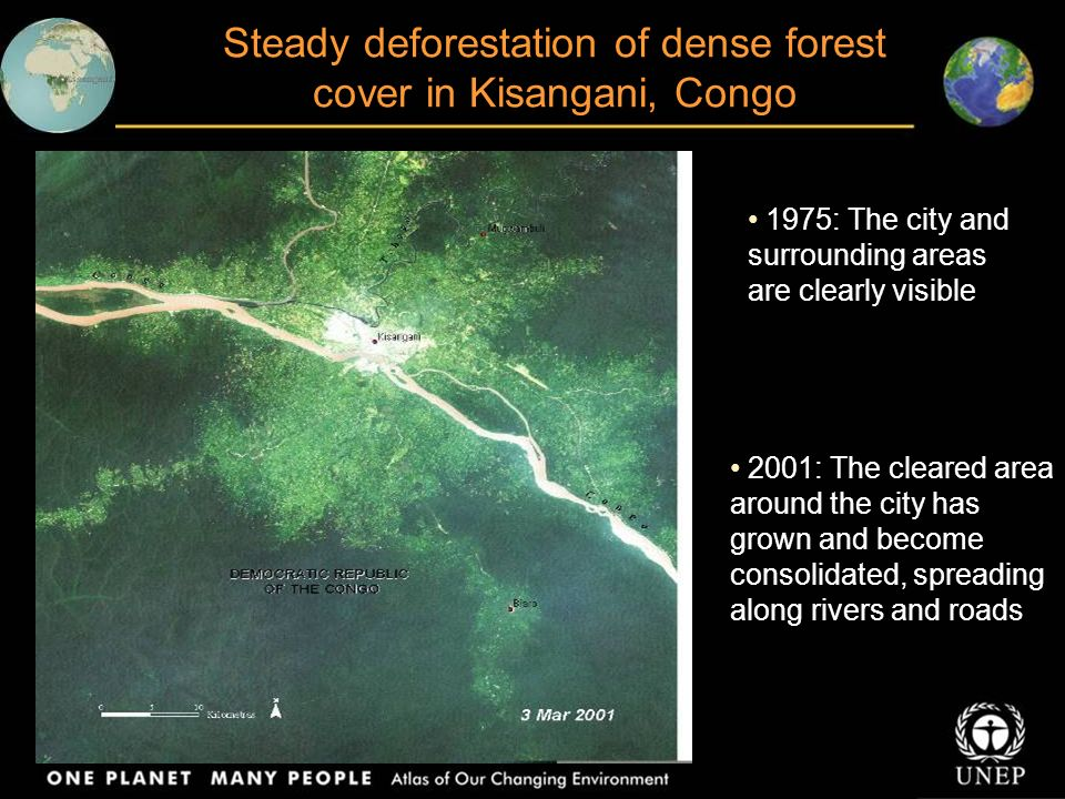 Deforestation in Tai National Park Côte d`Ivoire These images show deforestation rates in the area, believed to be one of the highest in the world 1988: Shows destruction of small forest fragments 2002: The lighter green strip bisecting the images is the result of extensive deforestation and intensive cultivation