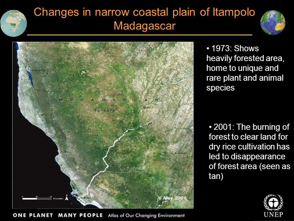Steady deforestation of dense forest cover in Kisangani, Congo 1975: The city and surrounding areas are clearly visible 2001: The cleared area around the city has grown and become consolidated, spreading along rivers and roads