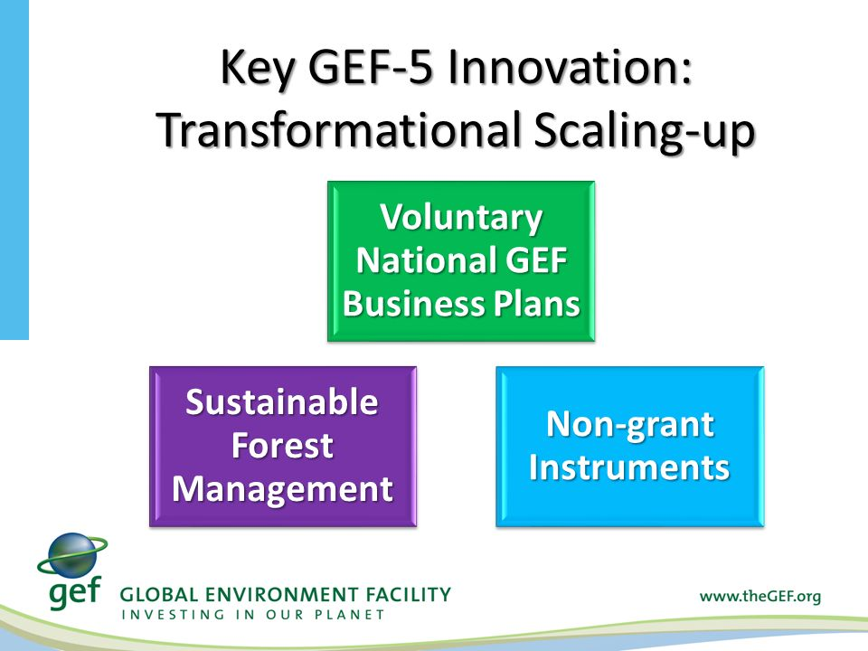 Key GEF-5 Innovation: Transformational Scaling-up Voluntary National GEF Business Plans Sustainable Forest Management Non-grant Instruments