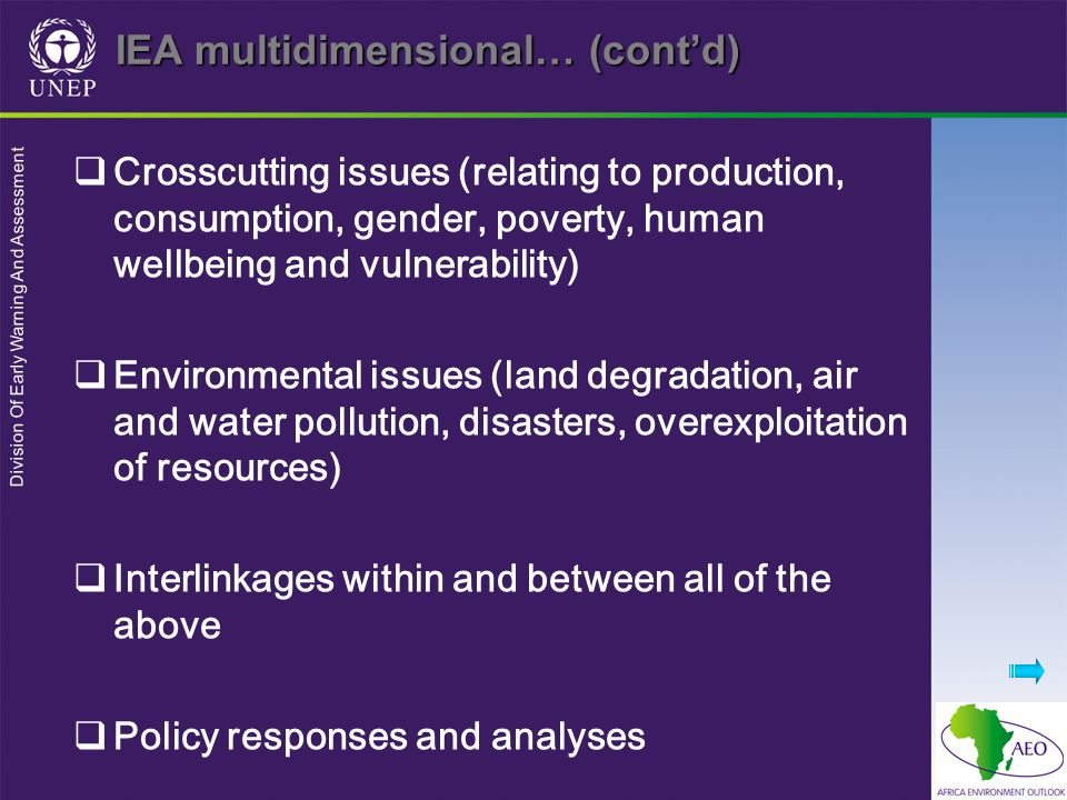 Division Of Early Warning And Assessment IEA multidimensional… (contd) Crosscutting issues (relating to production, consumption, gender, poverty, huma