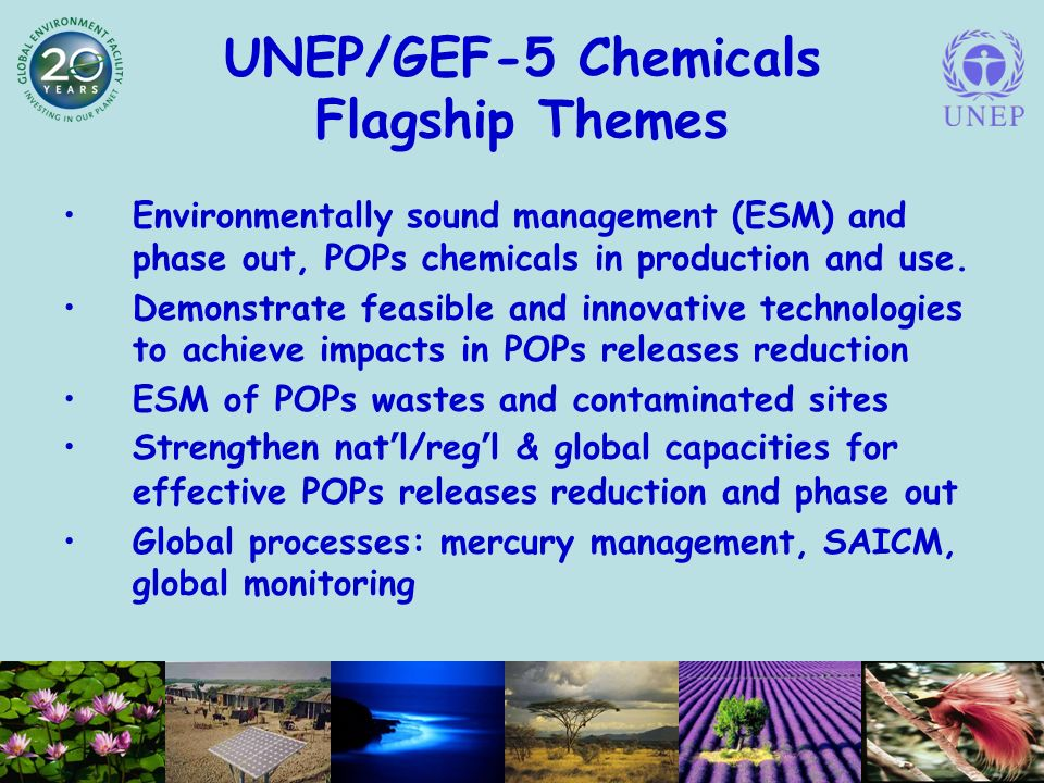 UNEP/GEF-5 Chemicals Flagship Themes Environmentally sound management (ESM) and phase out, POPs chemicals in production and use.