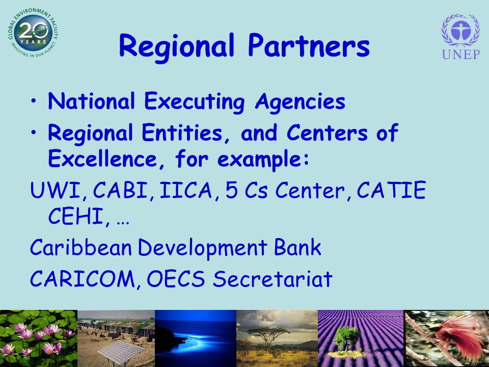 Regional Partners National Executing Agencies Regional Entities, and Centers of Excellence, for example: UWI, CABI, IICA, 5 Cs Center, CATIE CEHI, … Caribbean Development Bank CARICOM, OECS Secretariat