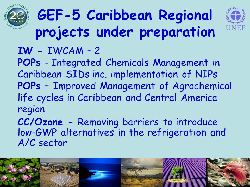GEF-5 Caribbean Regional projects under preparation IW - IWCAM – 2 POPs - Integrated Chemicals Management in Caribbean SIDs inc.