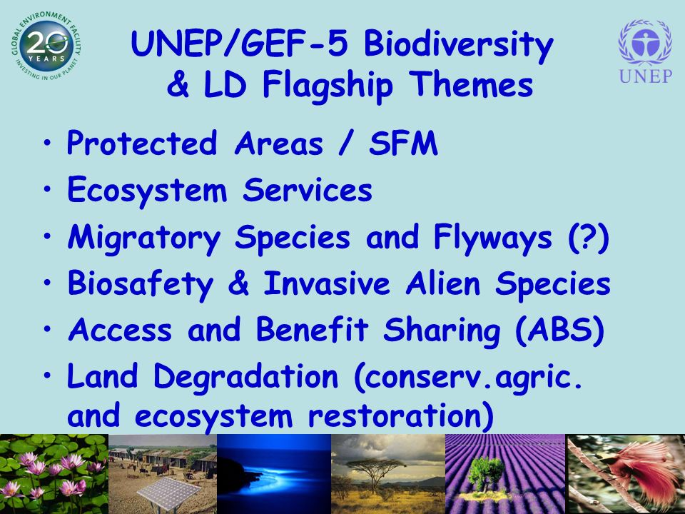 UNEP/GEF-5 Biodiversity & LD Flagship Themes Protected Areas / SFM Ecosystem Services Migratory Species and Flyways ( ) Biosafety & Invasive Alien Species Access and Benefit Sharing (ABS) Land Degradation (conserv.agric.