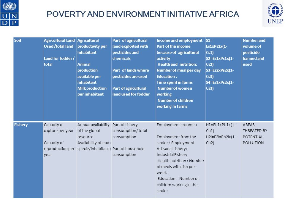 Mainstreaming PE INDICATORS INTO NATIONAL M&E FRAMEWORKS National consultations ( all stakeholders ) PROVIDE THOSE INDICATORS WHITIN THE RIGHT TIMELINE POVERTY AND ENVIRONMENT INITIATIVE AFRICA