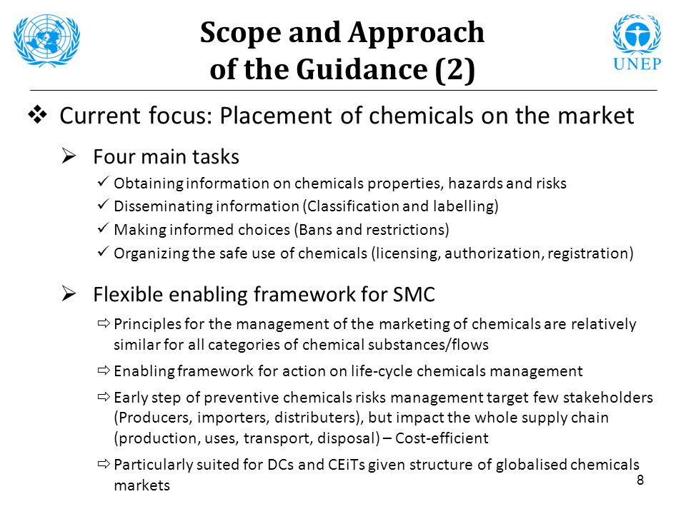 8 Scope and Approach of the Guidance (2) Current focus: Placement of chemicals on the market Four main tasks Obtaining information on chemicals proper