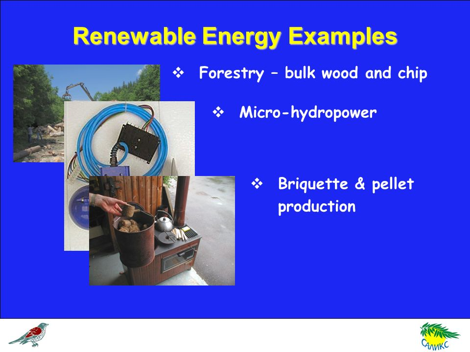 Renewable Energy Examples Forestry – bulk wood and chip Micro-hydropower Briquette & pellet production