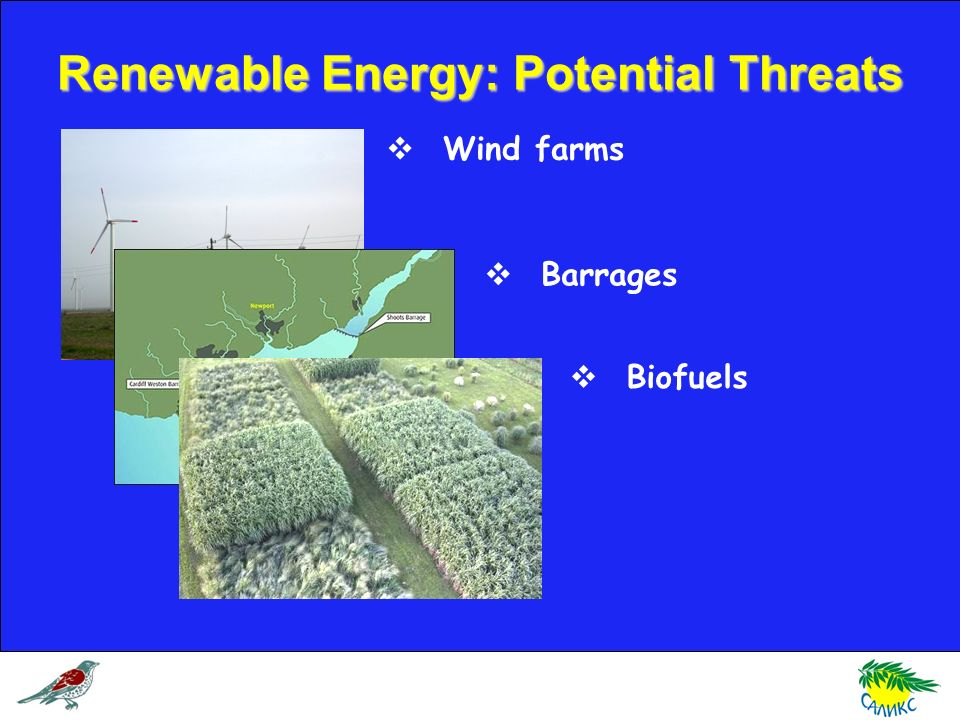 Renewable Energy: Potential Threats Wind farms Barrages Biofuels