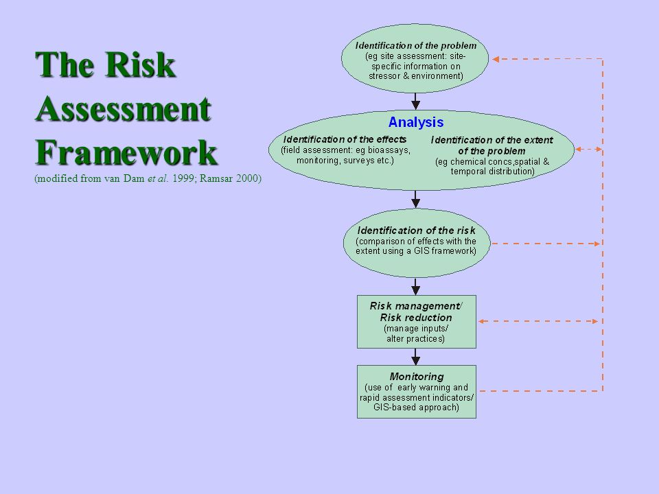 The Risk Assessment Framework The Risk Assessment Framework (modified from van Dam et al. 1999; Ramsar 2000)