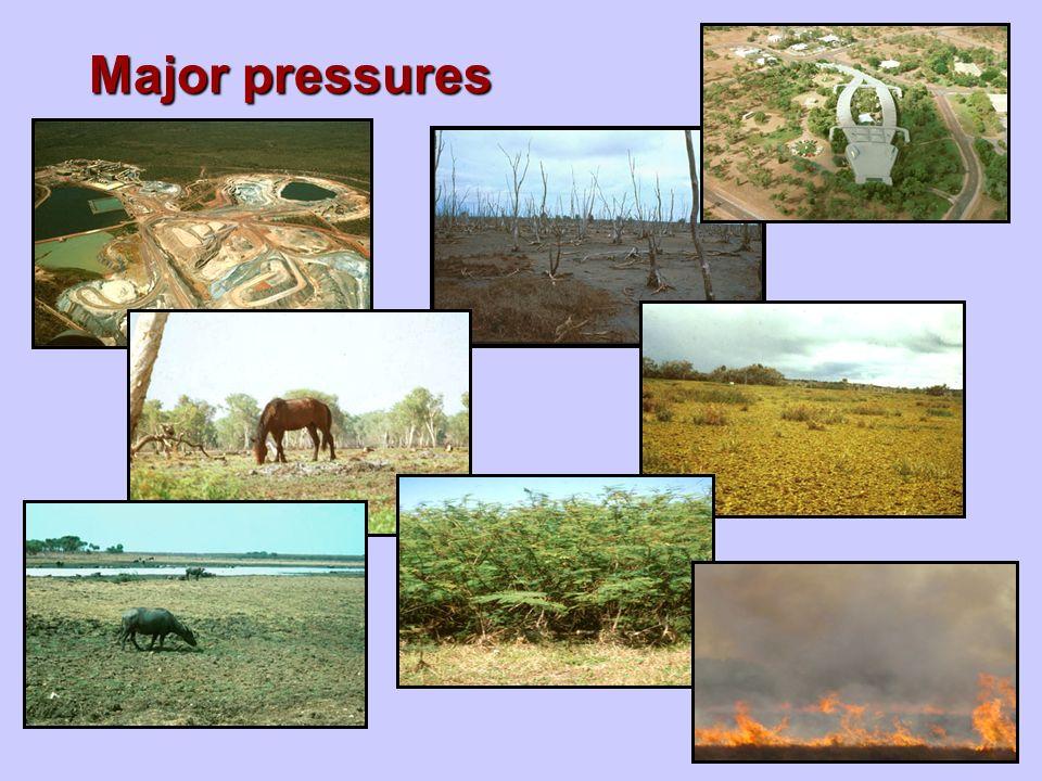 Major pressures