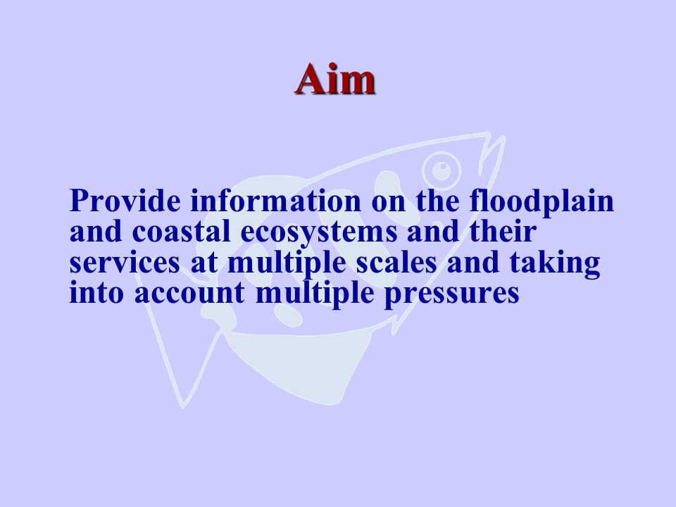 Aim Provide information on the floodplain and coastal ecosystems and their services at multiple scales and taking into account multiple pressures