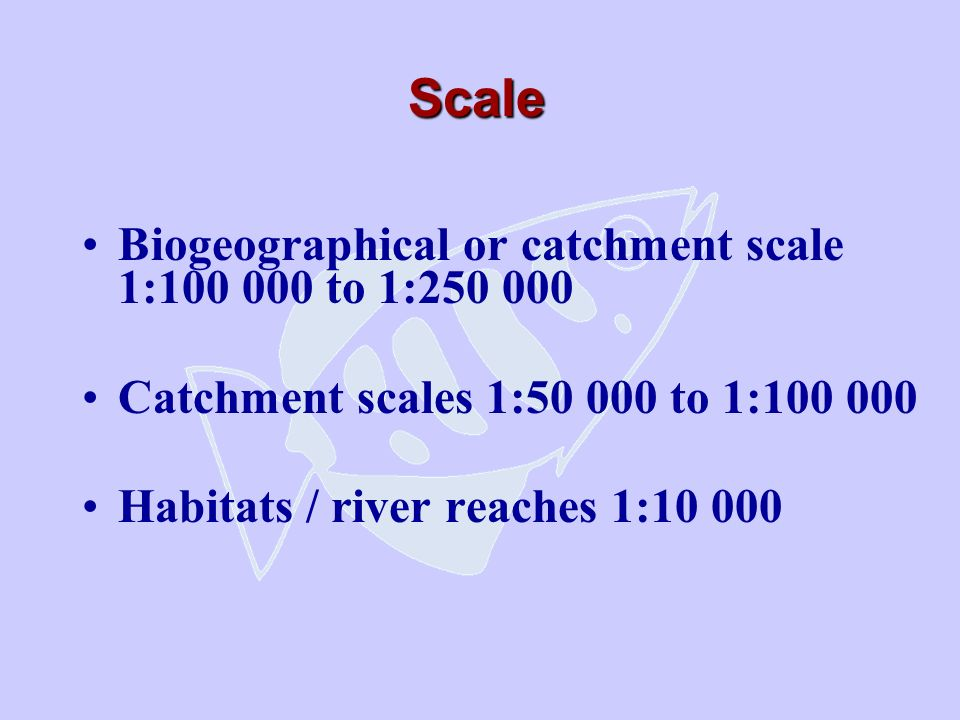 Scale Biogeographical or catchment scale 1:100 000 to 1:250 000 Catchment scales 1:50 000 to 1:100 000 Habitats / river reaches 1:10 000