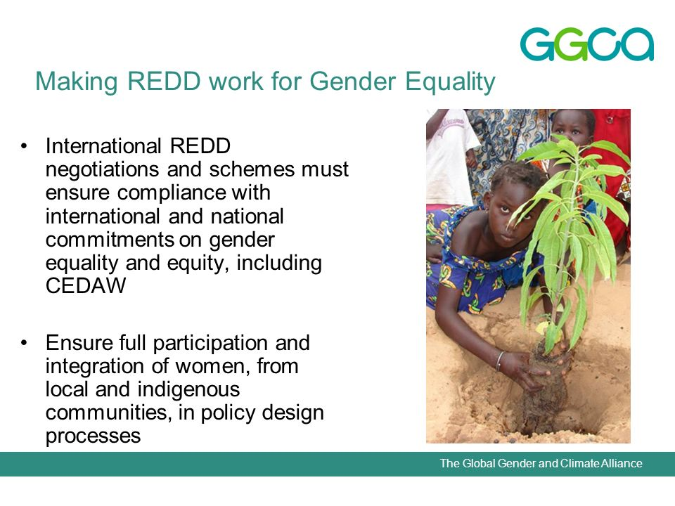 The Global Gender and Climate Alliance International REDD negotiations and schemes must ensure compliance with international and national commitments on gender equality and equity, including CEDAW Ensure full participation and integration of women, from local and indigenous communities, in policy design processes Making REDD work for Gender Equality