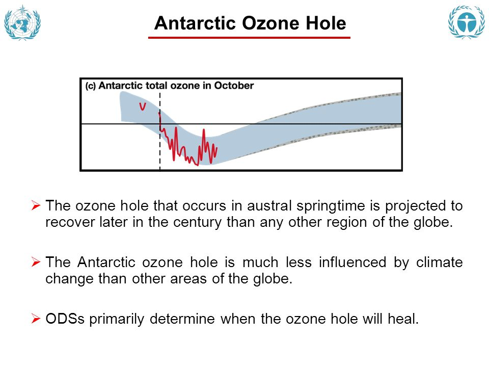 The ozone hole that occurs in austral springtime is projected to recover later in the century than any other region of the globe.