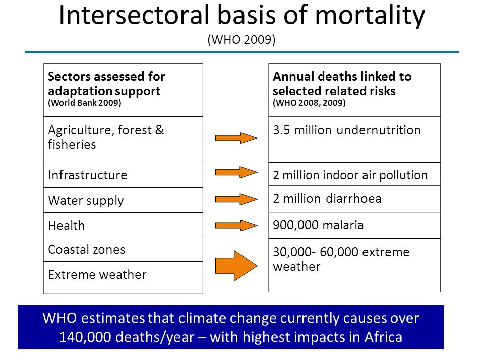 Intersectoral basis of mortality (WHO 2009) Sectors assessed for adaptation support (World Bank 2009) Agriculture, forest & fisheries Infrastructure W