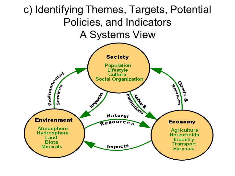 c) Identifying Themes, Targets, Potential Policies, and Indicators A Systems View