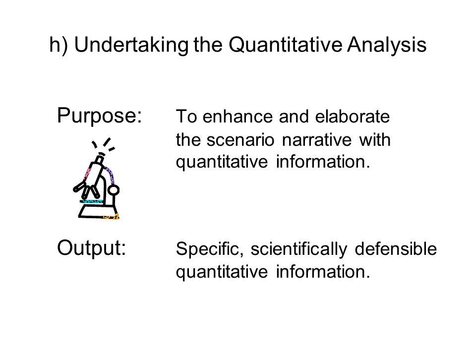 h) Undertaking the Quantitative Analysis Purpose: To enhance and elaborate the scenario narrative with quantitative information. Output: Specific, sci