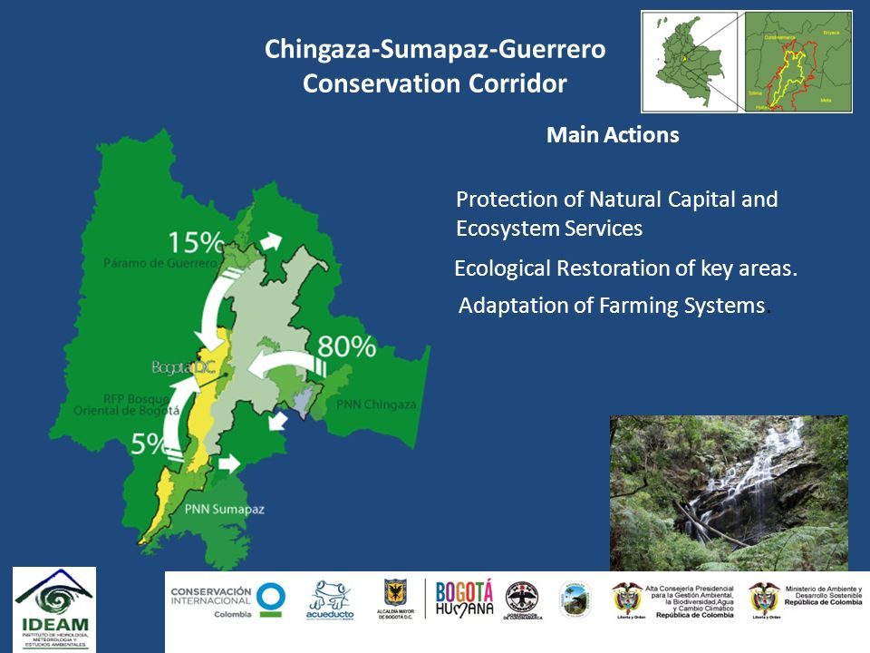 Chingaza-Sumapaz-Guerrero Conservation Corridor Main Actions Protection of Natural Capital and Ecosystem Services Ecological Restoration of key areas.