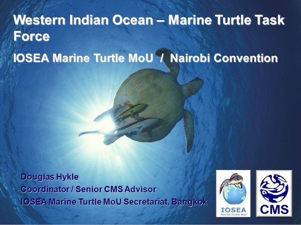 Douglas Hykle Coordinator / Senior CMS Advisor IOSEA Marine Turtle MoU Secretariat, Bangkok Western Indian Ocean – Marine Turtle Task Force IOSEA Mari
