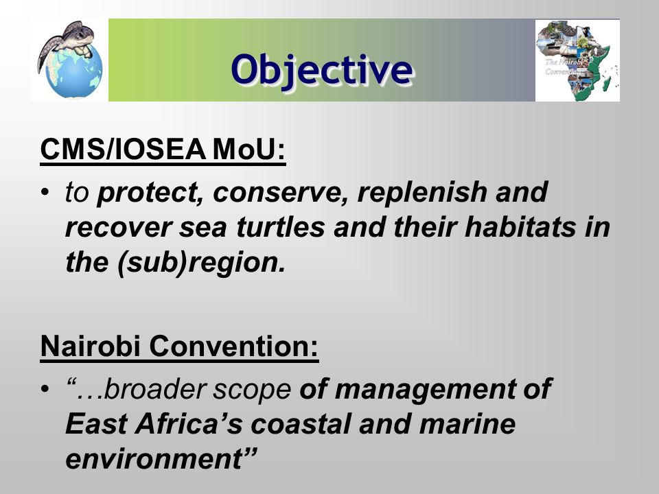 ObjectiveObjective CMS/IOSEA MoU: to protect, conserve, replenish and recover sea turtles and their habitats in the (sub)region. Nairobi Convention: …