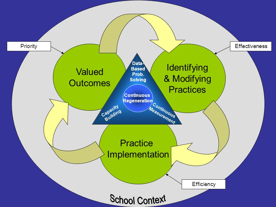 Valued Outcomes Practice Implementation Identifying & Modifying Practices Efficiency EffectivenessPriority Continuous Regeneration Continuous Measurem