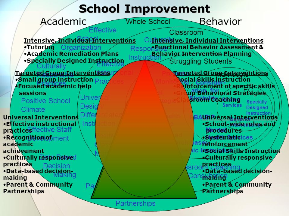 Whole School Effective School Organization Positive School Climate Effective Staff Development Data Based Decision Making Culturally Responsive Practi