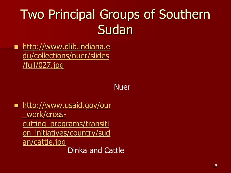 15 Two Principal Groups of Southern Sudan Nuer Dinka and Cattle http://www.dlib.indiana.e du/collections/nuer/slides /full/027.jpg http://www.dlib.ind