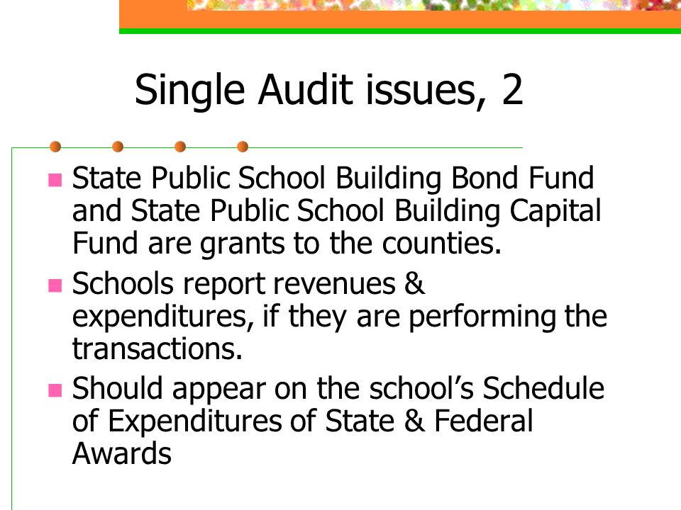 Single Audit issues, 2 State Public School Building Bond Fund and State Public School Building Capital Fund are grants to the counties.