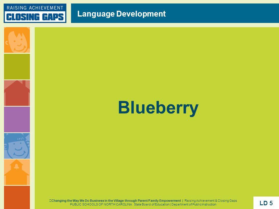 Blueberry Language Development Changing the Way We Do Business in the Village through Parent/Family Empowerment | Raising Achievement & Closing Gaps P
